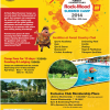 Advertisement: Rock Wood Summer Camp